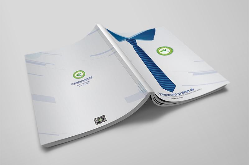 沙溪青企--画册设计案例分享